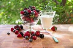 Здоровый завтрак ягоды с молоком на окне в лете стоковое фото rf