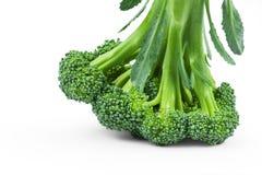 Здоровый зеленый органический сырцовый брокколи изолированный над белой предпосылкой Florets подготавливают для варить овощ салат стоковое фото rf