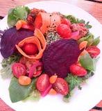 Здоровый красочный салат джекфрута свеклы Vegan Стоковое Изображение RF