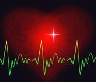 здоровый ритм сердца Стоковое фото RF