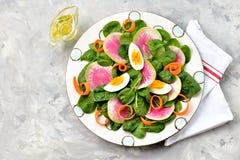 Здоровый салат младенца шпината, моркови, редиска вареного яйца и арбуза с оливковым маслом, бальзамический уксус и соевый соус Стоковые Изображения RF