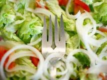 Здоровый салат стоковые изображения rf