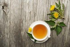 Здоровый чай с листьями одуванчика и крапивы Стоковые Фото