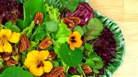 здоровый vegetarian салата Стоковое Изображение RF