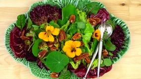 здоровый vegetarian салата Стоковые Фотографии RF
