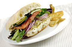 здоровый veggie сандвича Стоковые Фото