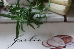 здоровье, еда, зеленый цвет, овощи, vegan, огурец, лук, chives, чеснок, комплект лука, травы, укроп, верхняя часть, верхняя часть Стоковое фото RF
