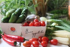 здоровье, еда, зеленый цвет, овощи, vegan, огурец, лук, chives, чеснок, комплект лука, травы, укроп, верхняя часть, верхняя часть Стоковое Изображение
