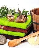 здоровье зеленых заводов Стоковое Фото