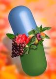 здоровье сохраняет ваше Стоковое Изображение
