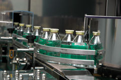 здоровье фабрики Стоковое фото RF