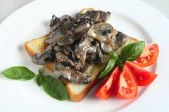 Здравица с грибами в cream соусе стоковое фото rf