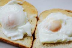 здравица poached яичками Стоковое фото RF