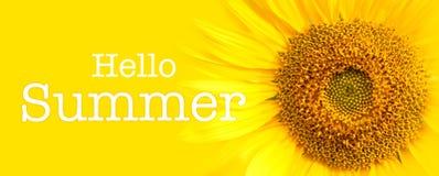 Здравствуйте! детали конца-вверх текста и солнцецвета лета в желтой предпосылке знамени Стоковые Изображения