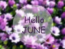 Здравствуйте июнь Добро пожаловать карта с текстом на запачканной пурпурной естественной флористической предпосылке Концепция сез иллюстрация штока
