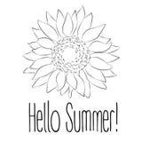 Здравствуйте! лето! Иллюстрация вектора солнцецвета на белой предпосылке Стоковое Изображение RF