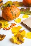 Здравствуйте!, осень Оранжевая листва осени блокнота тыкв на белом конце предпосылки вверх стоковое фото