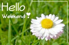 Здравствуйте! плакат цитаты мотивировки выходных Стоковые Изображения RF