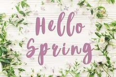 Здравствуйте! положение квартиры знака текста весны красивые цветки сирени и da Стоковые Изображения RF