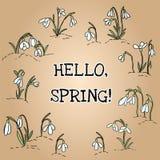 Здравствуйте текст весны в венке орнамента snowdrops Начинать весны иллюстрация вектора