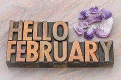 Здравствуйте! февраль в винтажном деревянном типе Стоковое фото RF