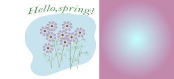 Здравствуйте!, цветене весны простое и kosmeya цветков beautiul красочное иллюстрация вектора