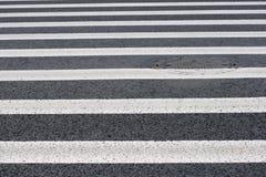 Зебра - вид дорожной разметки Стоковые Фото