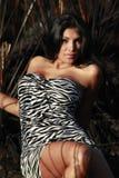 зебра девушки одичалая Стоковые Изображения
