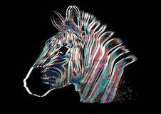 Зебра иллюстрации животная с нашивками акварели в предпосылке бесплатная иллюстрация