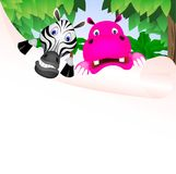 Зебра и hiipo Стоковое Изображение RF