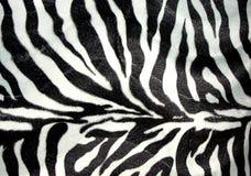 зебра картины Стоковые Фотографии RF