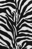 зебра кожи картины предпосылки Стоковые Фотографии RF