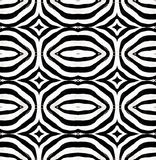 зебра кожи картины Стоковая Фотография