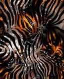 зебра кожи Стоковые Изображения RF