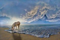Зебра на пляже Стоковые Изображения