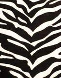 зебра печати Стоковая Фотография