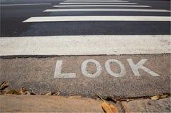 зебра пешехода скрещивания Стоковая Фотография RF