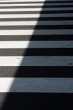 зебра скрещивания Стоковое Изображение