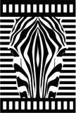 зебра стороны Стоковая Фотография RF