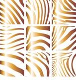 зебра структуры Иллюстрация вектора