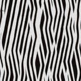зебра текстуры кожи Стоковые Фото