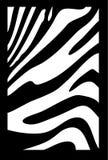 зебра текстуры Иллюстрация вектора