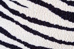 зебра текстуры Стоковая Фотография
