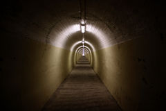 зебра тоннеля Стоковая Фотография RF