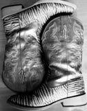 Зебра Glittered ботинки Стоковое Изображение