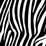 Зебра Stripes безшовная картина Печать зебры, шкура, нашивки тигра, абстрактная картина, линия предпосылка, ткань Изумительная ру иллюстрация штока