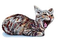 Зевая кот Стоковое Изображение RF