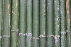 Зеленая бамбуковая предпосылка загородки Стоковые Фото