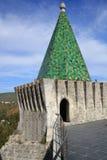 Зеленая башня Стоковые Фотографии RF