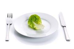 зеленая белизна салата плиты стоковые изображения rf